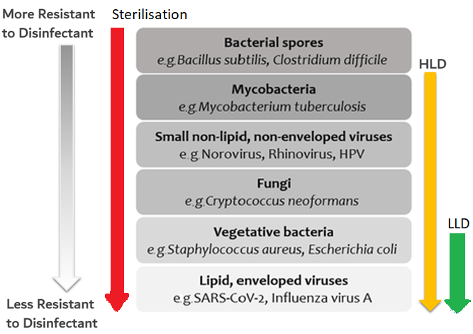 Endocavitary Transducet Why High Level Disinfection is Necessary